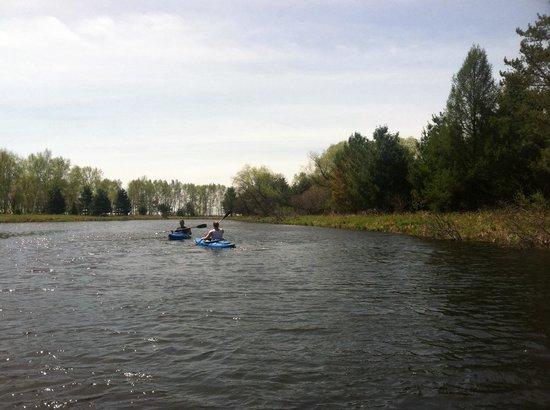 Samara Point Resort on Gull Lake: Complimentary kayak use.