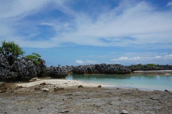 Ile aux Recifs: l'ile aux récifs