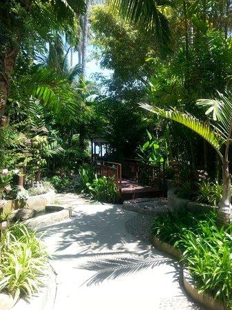 Baan Haad Ngam Boutique Resort & Villas: villa way