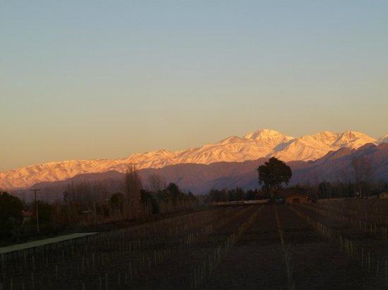 La Posada de Bodega Vistalba : vista