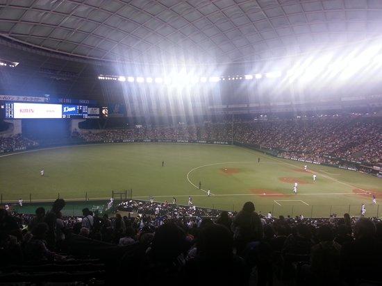 Seibu Prince Dome : On the Field