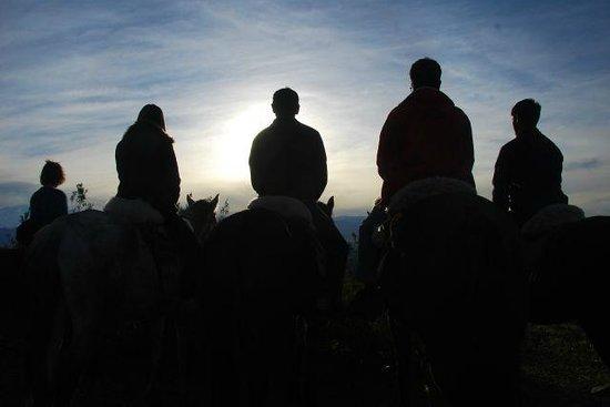 Los Pingos Horse Riding: A melhor foto