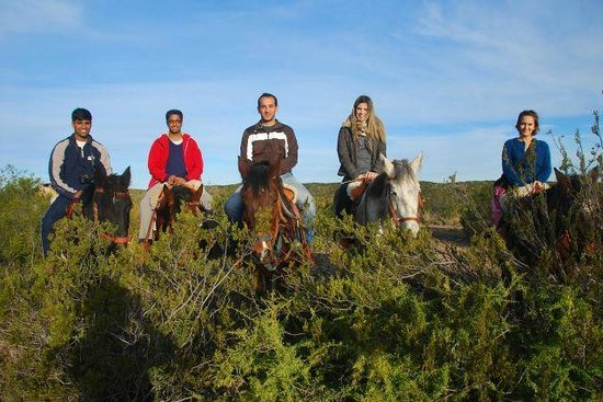 Los Pingos Horse Riding: Grupo