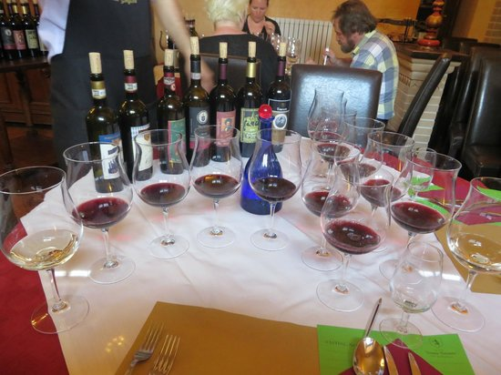 Tenuta Torciano Vineyards : Our choices