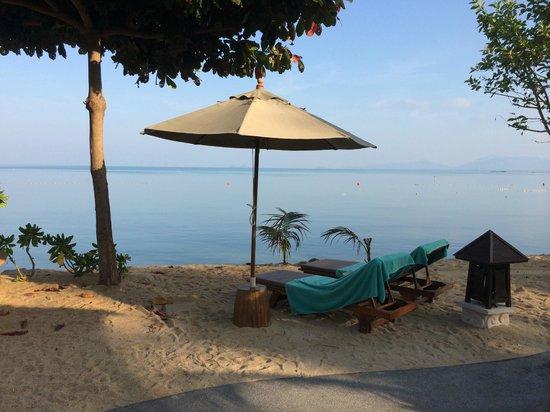 Fair House Villas & Spa: Sun loungers outside our villa