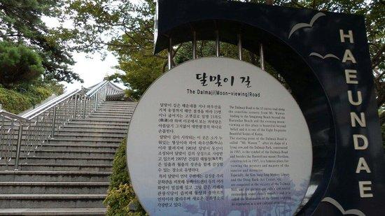 Haeundae Dalmaji-gil Road: Daaji-gil. Stairs to the observatory where u can view Japan's Daema Island on a clear day :)