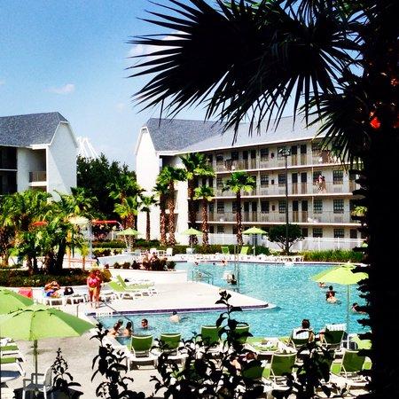 Avanti International Resort : Pool
