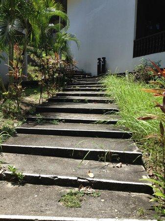 Century Langkawi Beach Resort: weeds everywhere