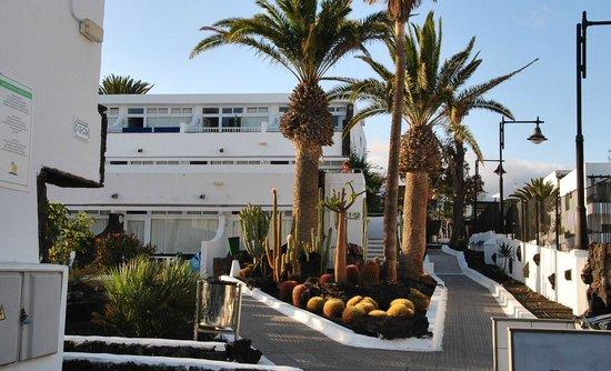 Arena Dorada Apartments : Die leicht ansteigende Anlage mit einem der Wohnblocks