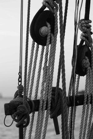 Schooner Appledore: Appledore II Sunset Sail