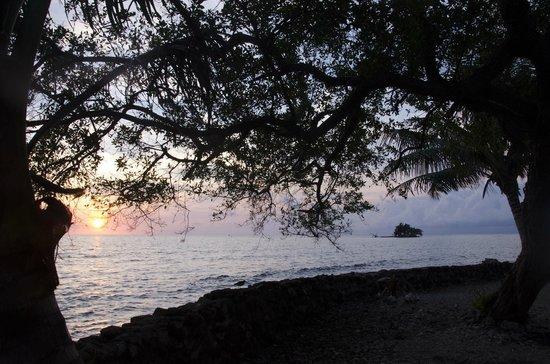 ReefCI : Sunrise on Tom Owens Cay, Belize
