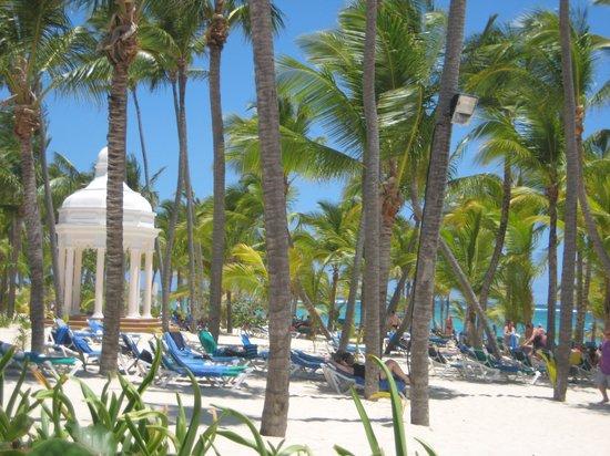 Hotel Riu Palace Punta Cana: beautiful beach
