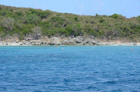 Frenchman's Reef & Morning Star Marriott Beach Resort: Buck Island