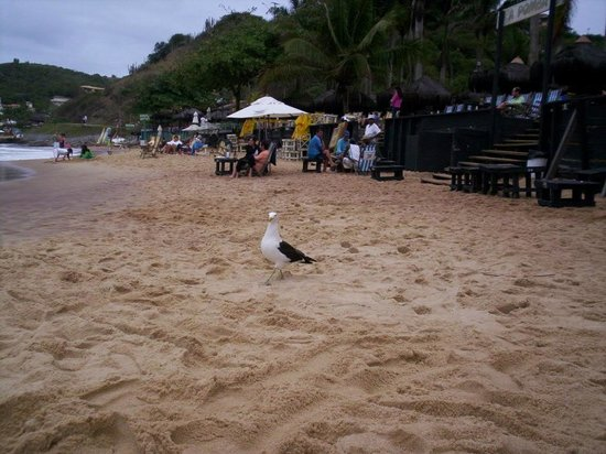 Joao Fernandes Beach : Playa Joao Fernandez