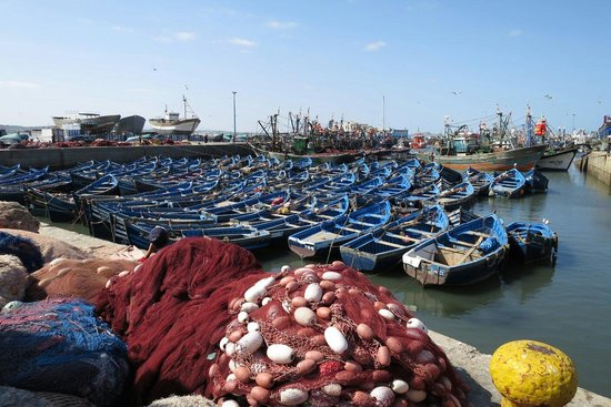 Essaouira Beach: The fishing port!