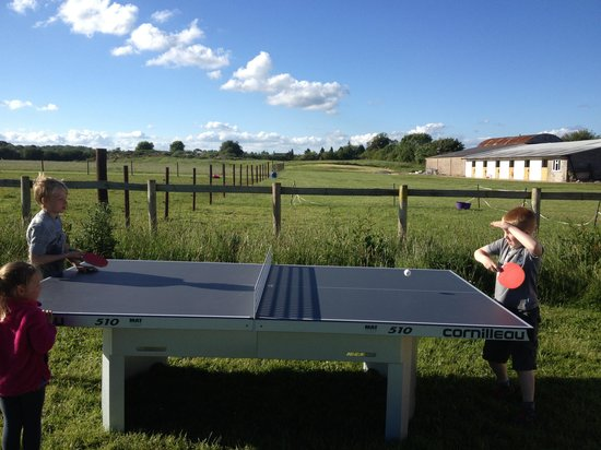 Pitchperfect Camping : Table Tennis