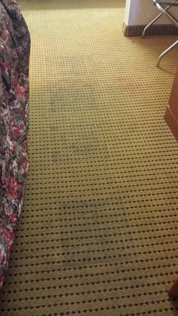 Econo Lodge Civic Center: Sticky squares on floor that our feet stuck to.