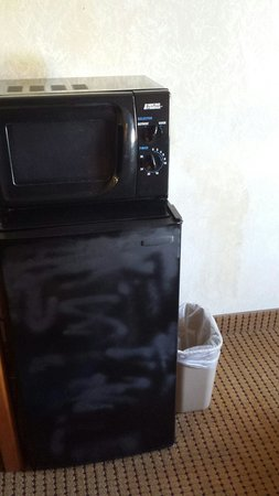 Econo Lodge Civic Center: Spray painted mini-fridge.