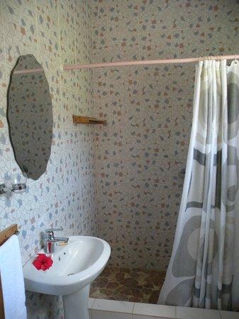 Tannette's Villa : La salle de bains