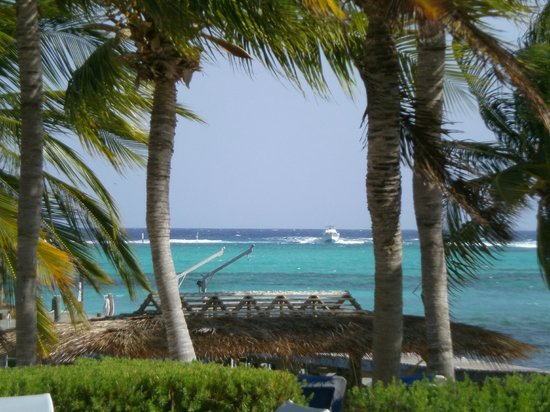 Little Cayman Beach Resort: LCBR Dive boat return to dock
