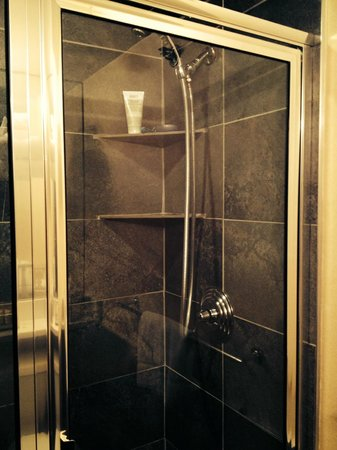 Harborside Inn : Very Clean Shower!