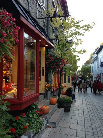 Japanese Guided Quebec City Sightseeing Tours on Foot - Quebec Guide Service : 石畳の路地