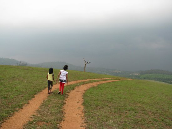 Mugilu: Kids enjoying the trail
