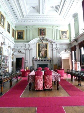 Calke Abbey: Stuffed animals in Calke's Great Hall