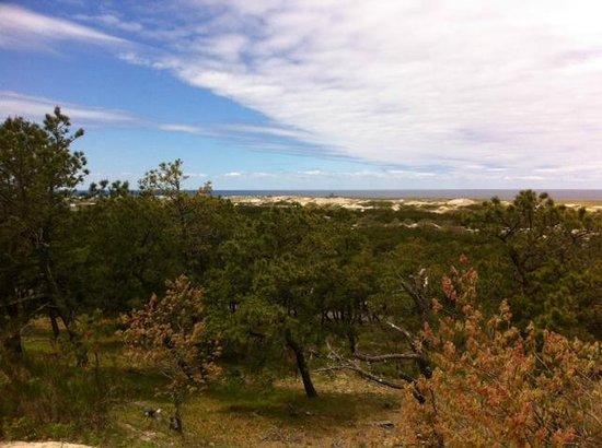Province Lands Visitor Center : View fom Obdservation Deck 2