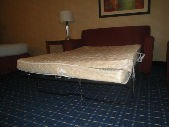 Courtyard by Marriott Detroit Downtown : sofabed