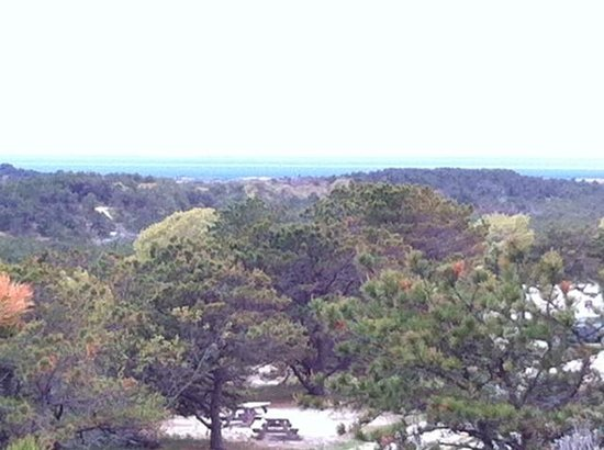 Province Lands Visitor Center : View from the Observation Deck 3