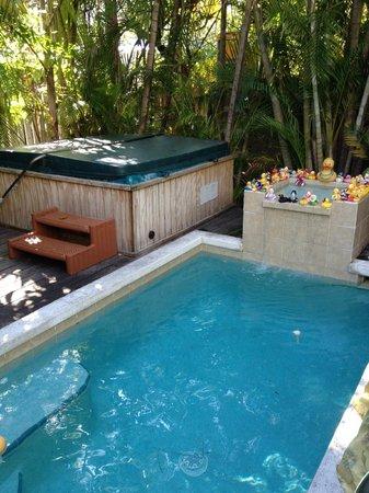 Knowles House B&B: Pool & Hot Tub