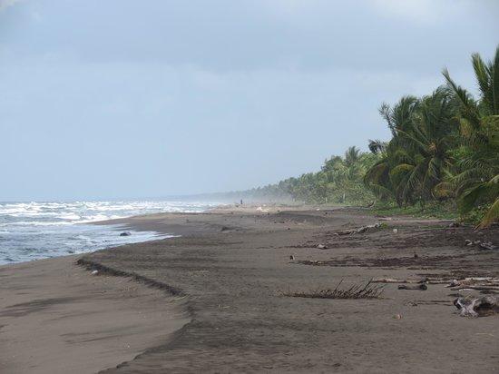 Mawamba Lodge : The beach