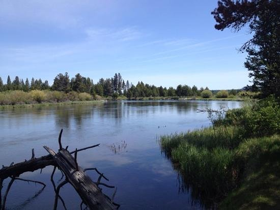 Sunriver Resort: Deschutes river from cycle trail