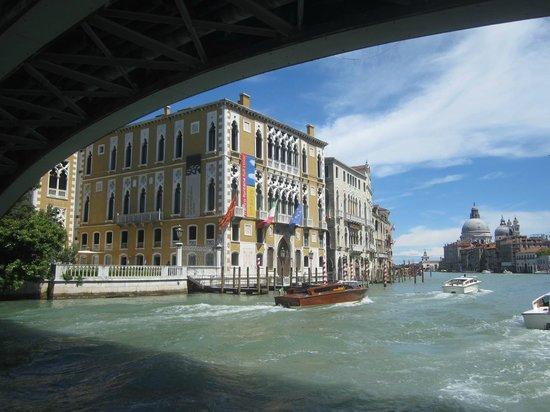 Ponte dell'Accademia : Мост над нами - плывем на вапаретто)