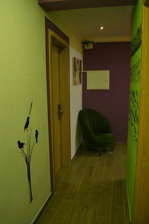 Cloud 9 Hostel: 2nd floor hallway