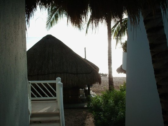 Sunscape Sabor Cozumel : room, bar, beach