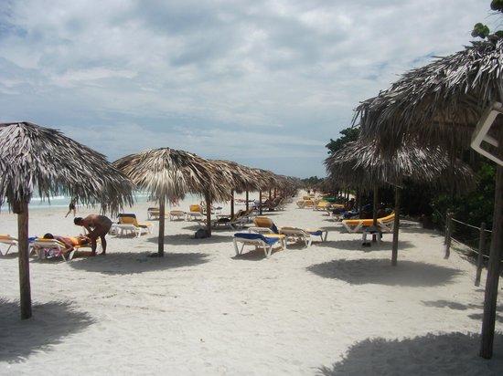 Iberostar Varadero: Relax on the white sandy beach alongside a clear calm sea