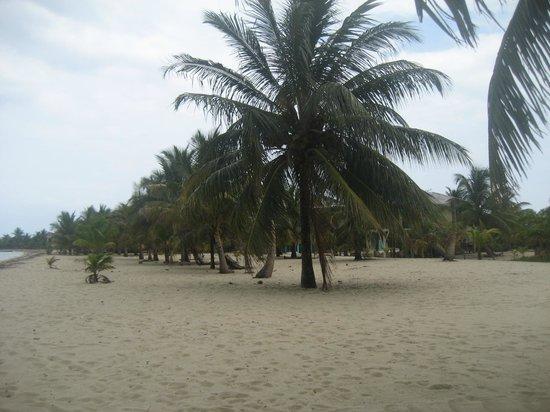Cozy Corner : beach view