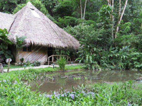 Esquinas Rainforest Lodge: The main lodge