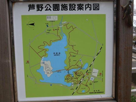 Ashino Park: 広大な公園です