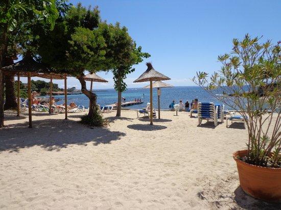 Hotel Son Caliu Spa Oasis: The beach