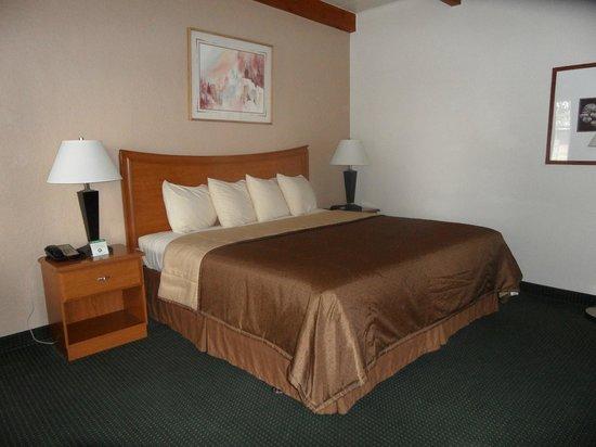 Best Western Canyon De Chelly Inn : Comfy room