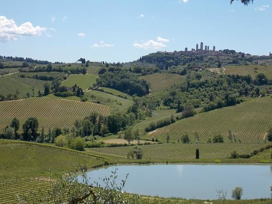 Walkabout Florence Tours: View from Poggio Alloro to San Gimignano