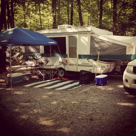 Honey Bear Campground: Nice, wooded sites