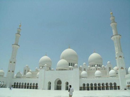 Mosquée Cheikh Zayed : Domes