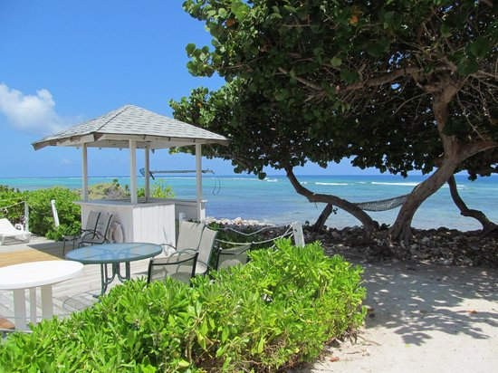 Hungry Iguana Restaurant: View from the Hungry Iguana patio