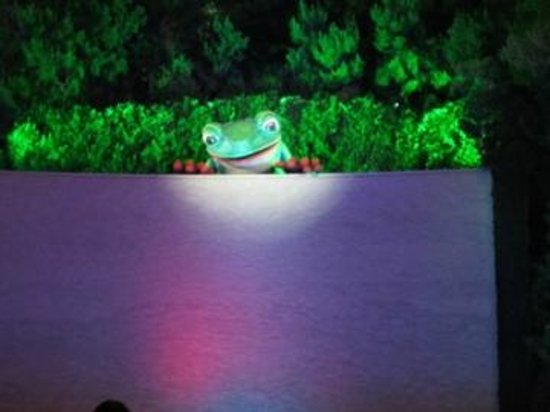 Parasol Up Parasol Down at Wynn Las Vegas : Frog Show