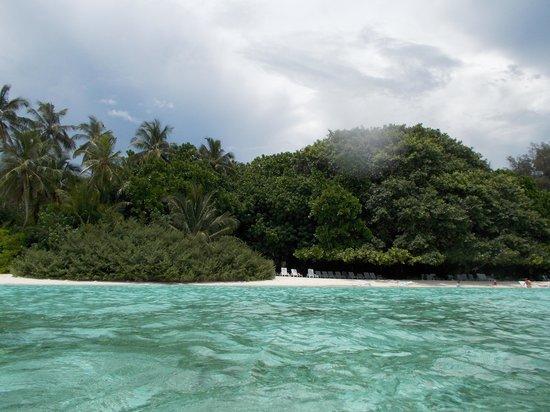 Biyadhoo Island Resort: 1