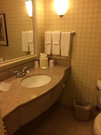 Hilton Garden Inn Sonoma County Airport : bathroom